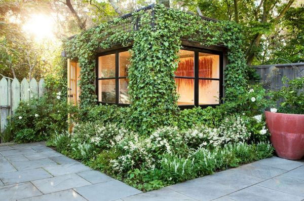 vine-covered walls enjoy