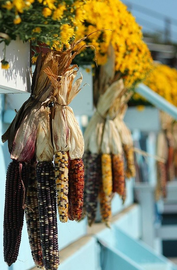Natural Fall Decorating Bring the Outside Inside this Season