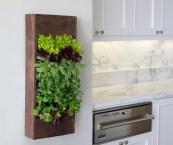 vertical herb garden in your kitchen