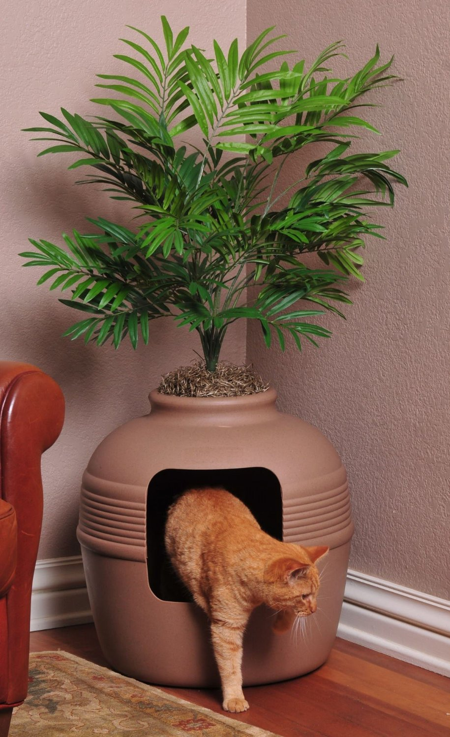 Top 10 Ingenious Ways to Hide Your Cats Litter Box