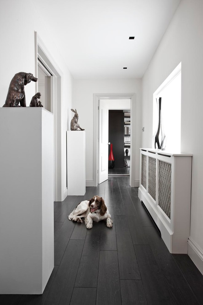 dark laminate flooring living room modern wall decorations for choosing the best type of dogs and their owners black