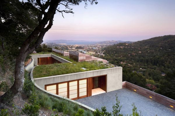 Hillside Homes Embrace Landscape