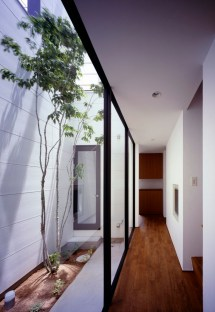 Narrow House with Courtyard