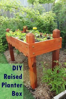 Diy Raised Planter Box Step-step Building Guide