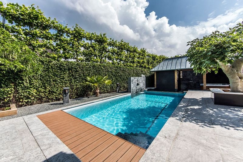 Backyard swimming pool and green tall fence