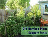 Diy Lattice Fence Build - DIY Design Ideas
