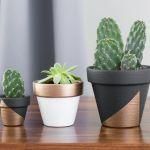 Modern Mini Painted Plant Pots