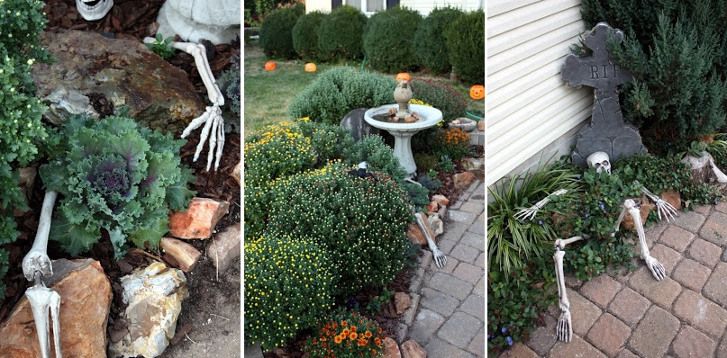 Backyard skeleton for Halloween