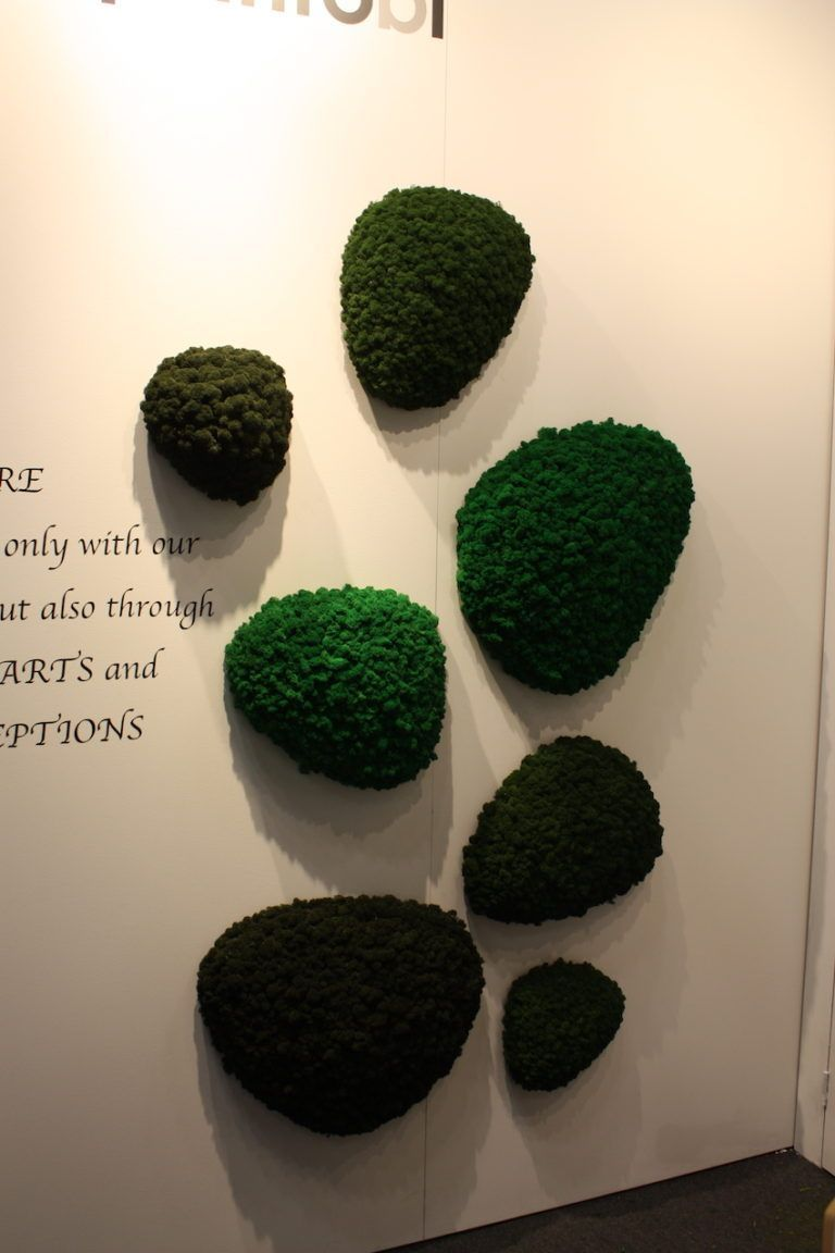 Green Polarmoss Archipelago on Wall