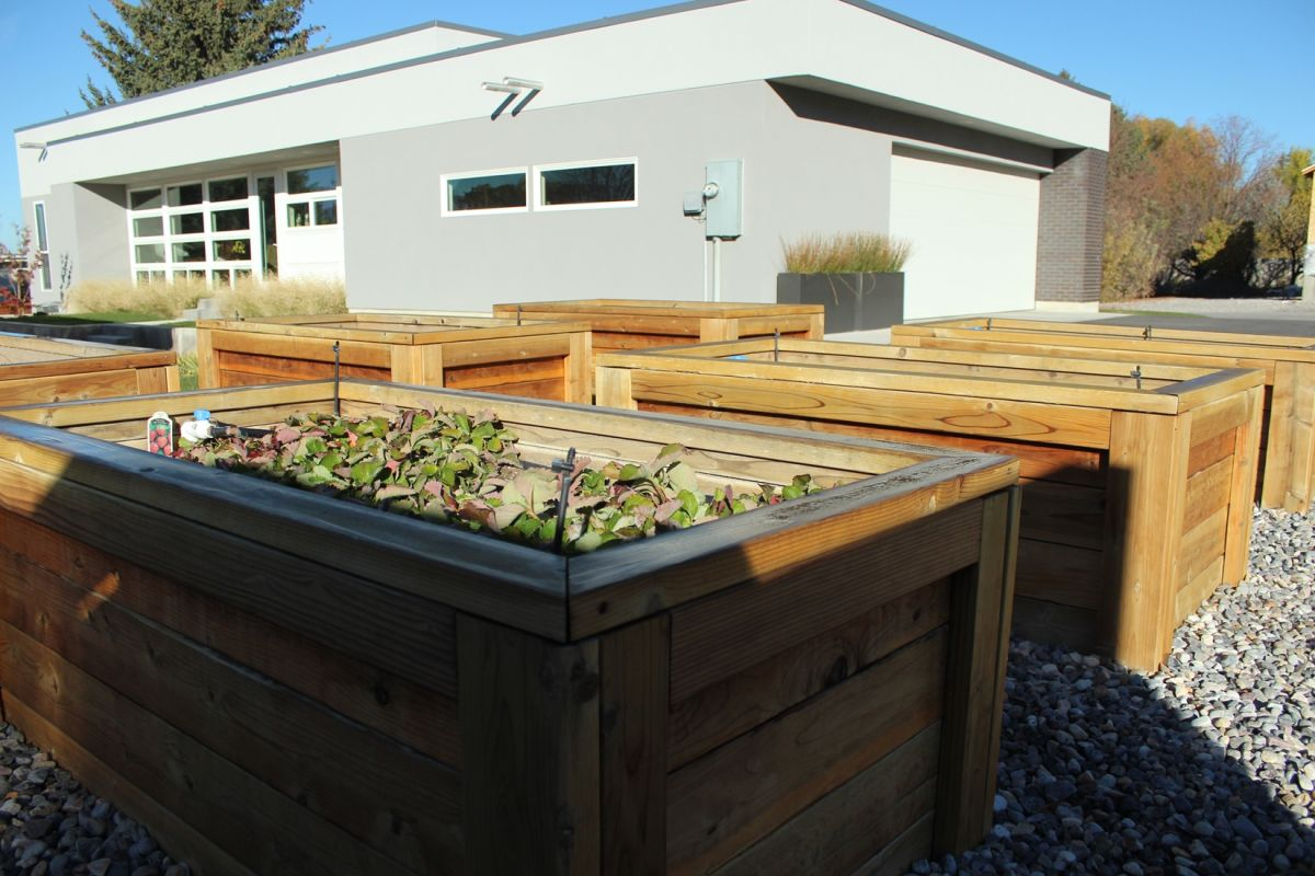 Curb Appeal - garden boxes