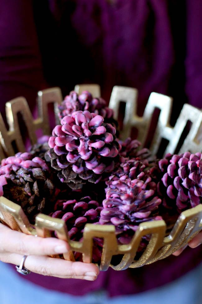 Dip paint pine cones