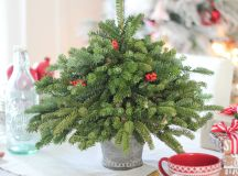 A Bunch of Christmas Flower Arrangements Infused With Holiday Charm images 9