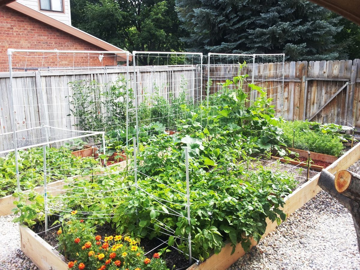 33 wonderful diy garden