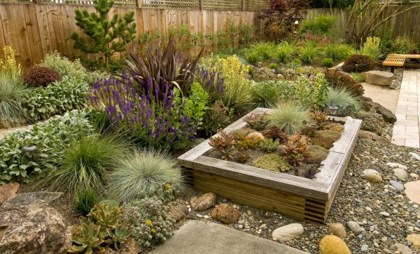 2020 landscaping costs average