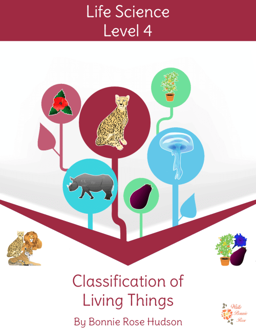 small resolution of FREE Animal Classification Color by Code - Homeschool Giveaways