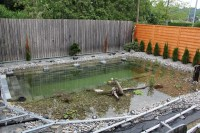 Ingenious Backyard Landscaping Design DIY Project-Swimming ...