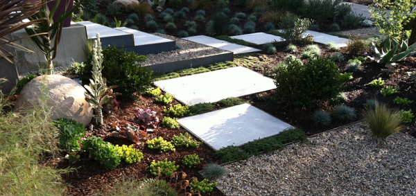 simple modern xeriscaping ideas