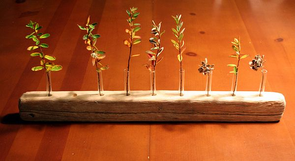 11 DIY Unique Test Tube Flower Vases- homesthetics decor (8)