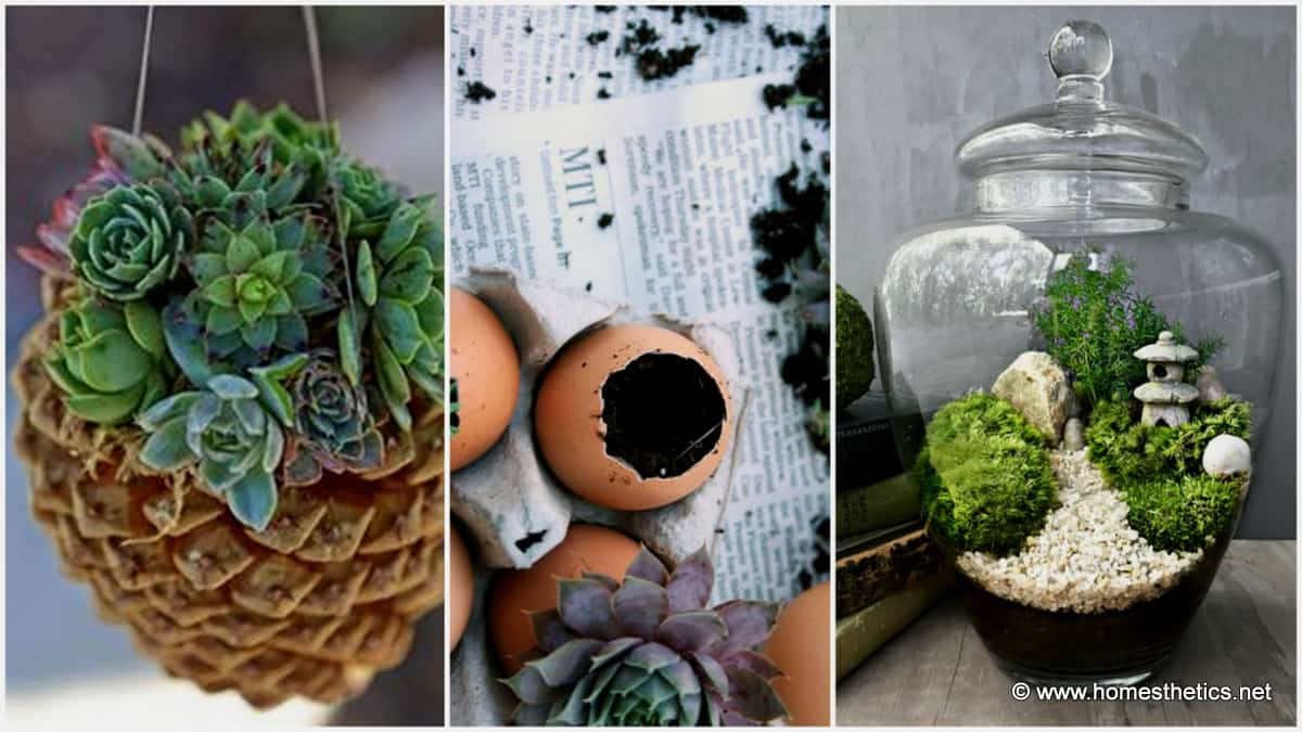 Welcome Spring With 20 Creative DIY Garden Projects Homesthetics