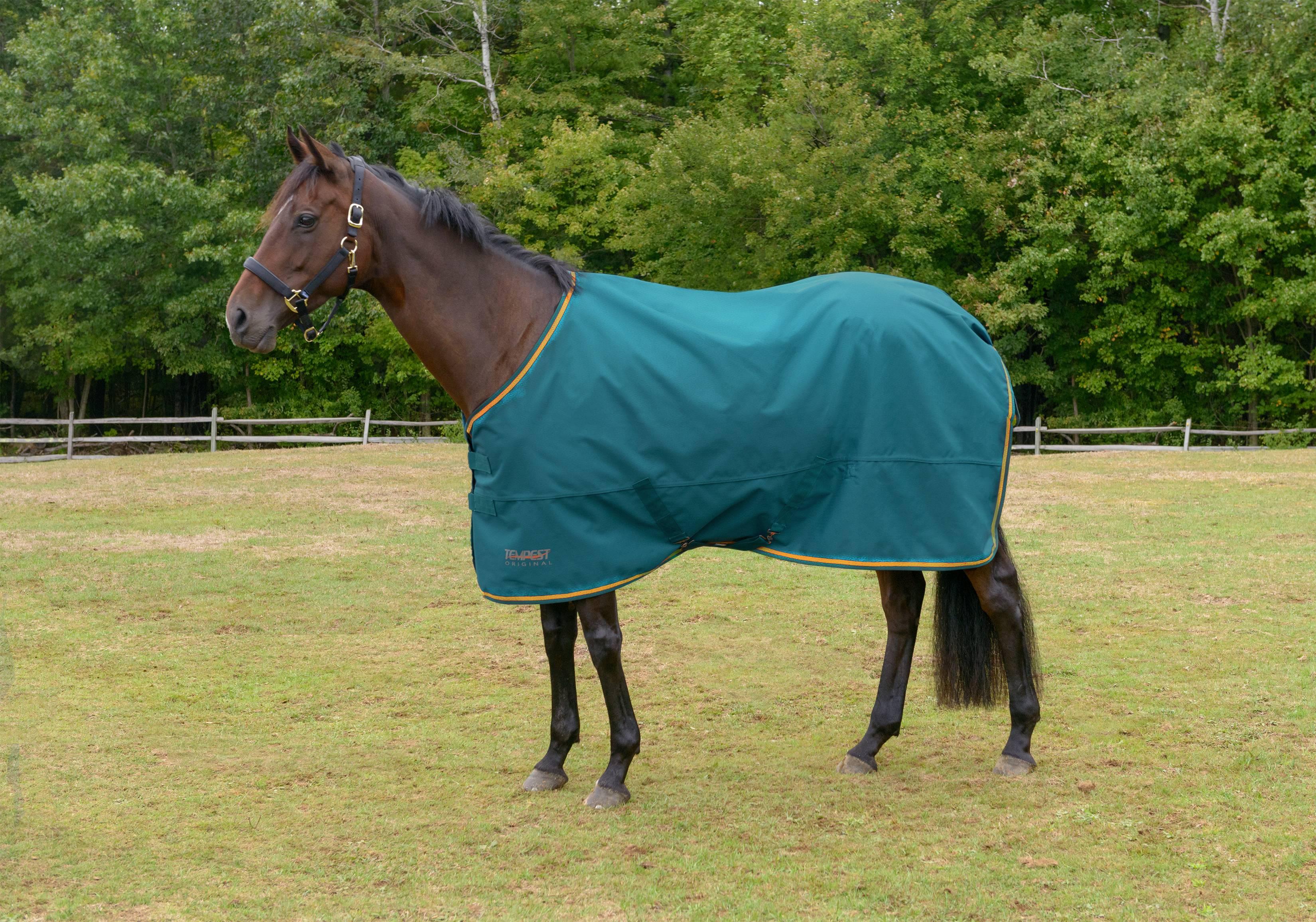 Shires Tempest 1200 Lite Turnout Blanket  eBay