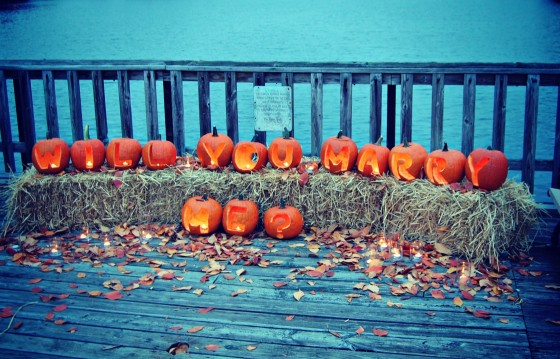 Pumpkin Proposal; A Fall Inspired Marriage Proposal's