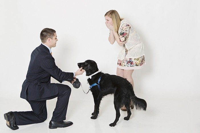 20 Cute Marriage Proposal Ideas With Dogs