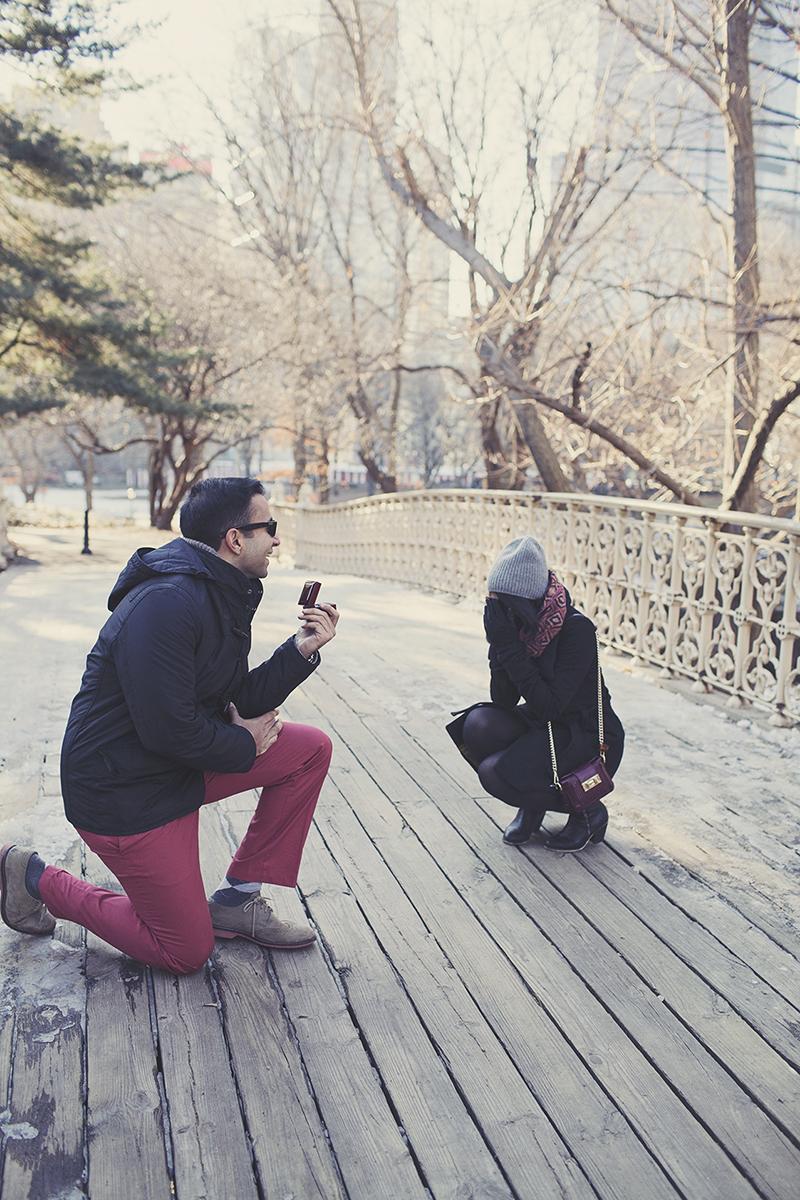 A Central Park Proposal Story