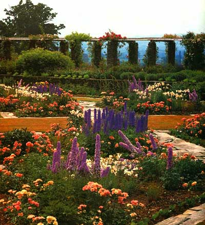 cool color garden ideas howstuffworks