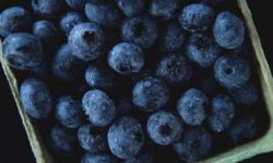 8: Try Blueberries - 10 Home Remedies for Diarrhea ...