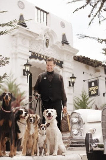 Dogs waiting outside the Cypress Inn in California, which was co-owned by the late actress Doris Day. Photo: Cypress Inn