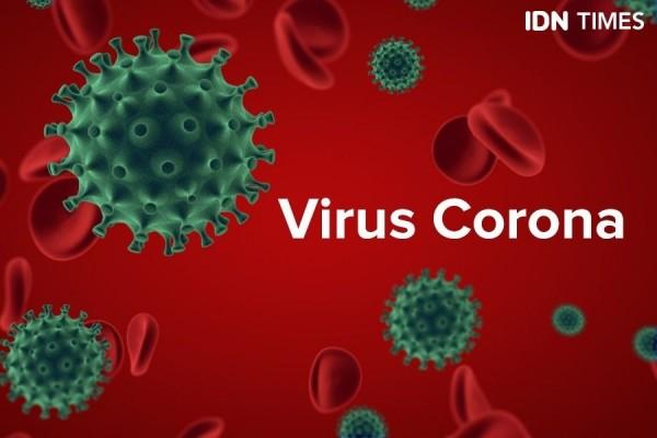 Jangan Panik, Ketahuilah 7 Fakta Penting Virus Corona