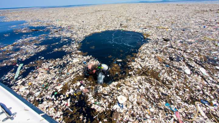 Image result for plastic pollution caribbean