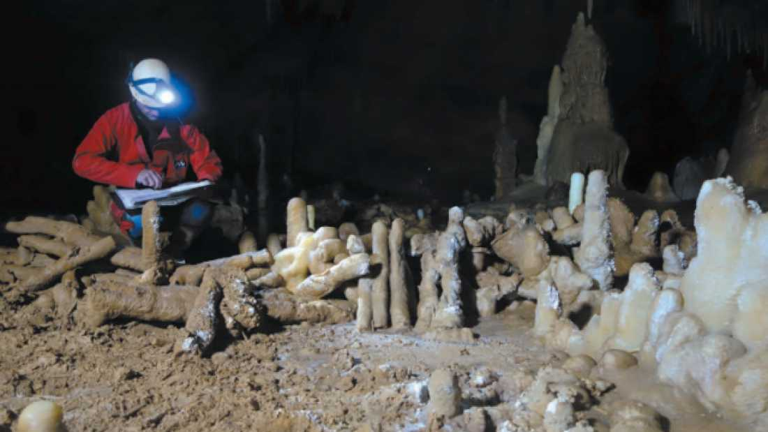 Oldest Known Neanderthal Construction Found In French Cave