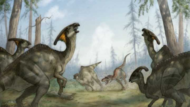 Baby Duck-Billed Dinosaurs Found In Dragon's Tomb Site | IFLScience