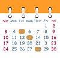 ハチカレンダー2 Lite - 日、週、月表示カレンダー