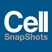 Cell SnapShots