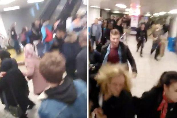 London Euston station evacuated