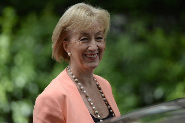 Andrea Leadsom Dont employ men as nannies  Daily Star