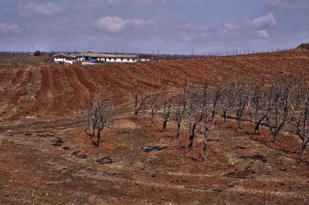 North Korean famine-stricken farm during the 1990s