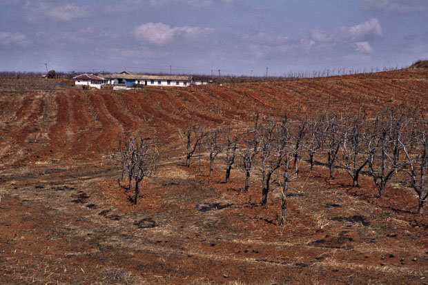 North Korean famine-stricken farm during the 1990s