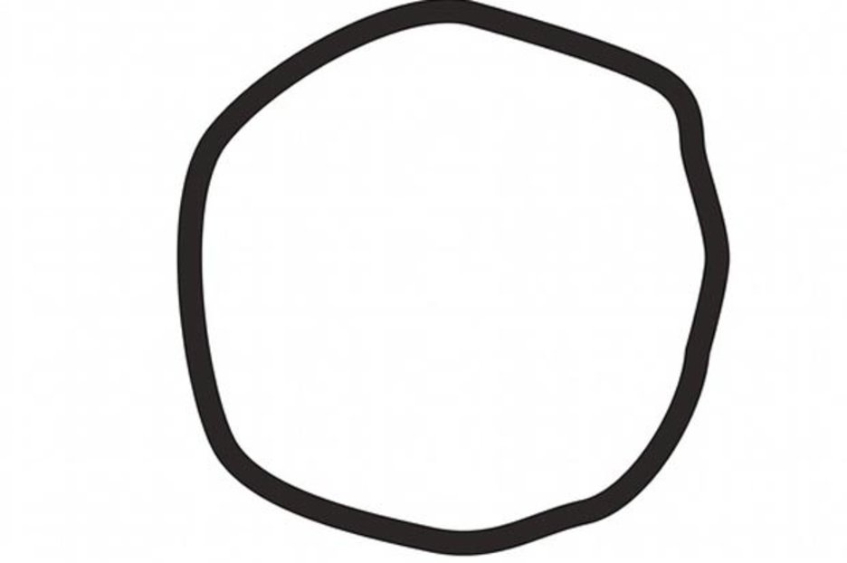 SHAPES: Whether or not you think this is a circle could