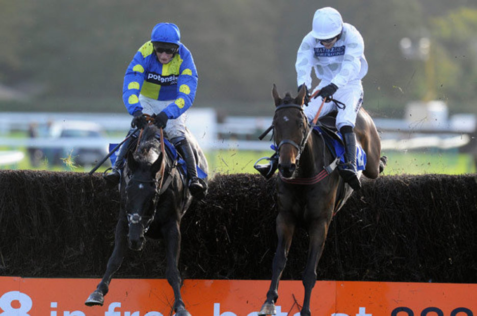 Horse Racing Black Thunder to roar home  Horse Racing Tips and Horse Racing News
