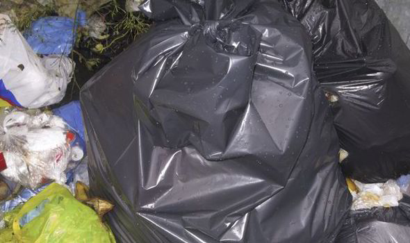 The cat heads were found in the dumped bin bag by council workers