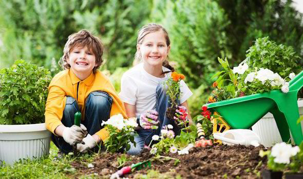 Parents fears ruin play time outdoors  UK  News