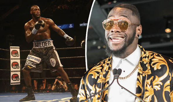 Deontay Wilder in the ring