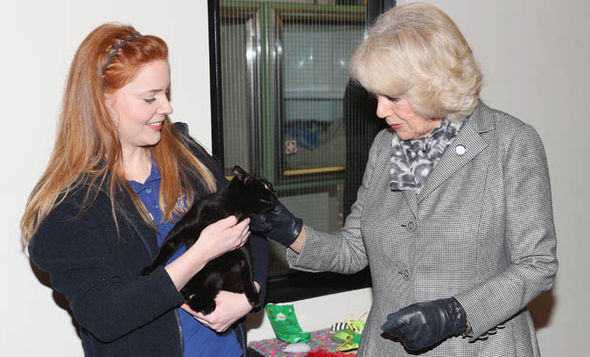 camilla visit battersea dogs and cats home