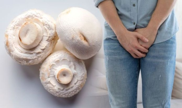 White button mushrooms may slow progression of prostate cancer – research results