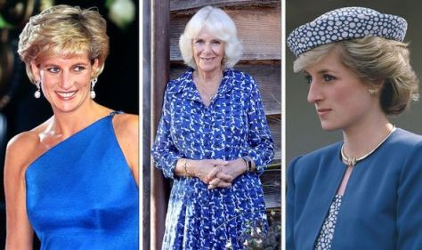 'Colour of confidence': Camilla & Diana more 'powerful' in blue - makes their eyes 'pop'