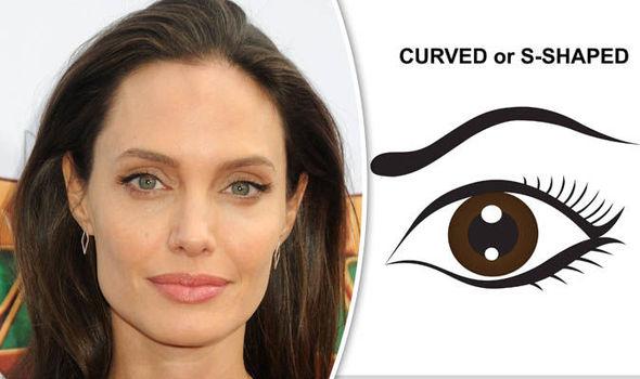 Celebrity eyebrows: Angelina Jolie tops list of eyebrows women ...