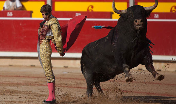 Spanish Fighting Bull Breeds